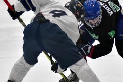 CIAC Ice Hockey; Newtown 4 vs. SH,LI,TH,NO 1 - Photo # (704)