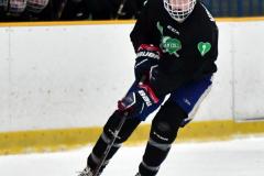 CIAC Ice Hockey; Newtown 4 vs. SH,LI,TH,NO 1 - Photo # (709)