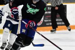 CIAC Ice Hockey; Newtown 4 vs. SH,LI,TH,NO 1 - Photo # (710)