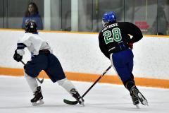 CIAC Ice Hockey; Newtown 4 vs. SH,LI,TH,NO 1 - Photo # (755)
