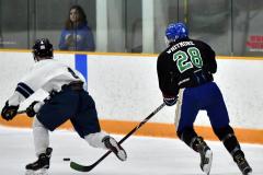 CIAC Ice Hockey; Newtown 4 vs. SH,LI,TH,NO 1 - Photo # (756)