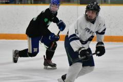 CIAC Ice Hockey; Newtown 4 vs. SH,LI,TH,NO 1 - Photo # (838)