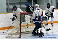 CIAC Ice Hockey; Newtown 4 vs. SH,LI,TH,NO 1 - Photo # (943)