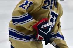 CIACT D3 Ice Hockey; #8 Newtown 7 vs. #9 Wilton 2 - Photo # 085