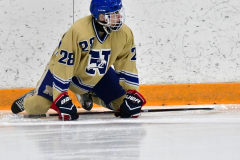 CIACT D3 Ice Hockey; #8 Newtown 7 vs. #9 Wilton 2 - Photo # 099