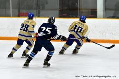 CIACT D3 Ice Hockey; #8 Newtown 7 vs. #9 Wilton 2 - Photo # 1026