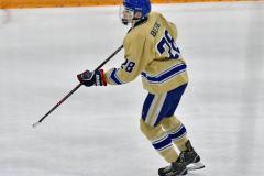 CIACT D3 Ice Hockey; #8 Newtown 7 vs. #9 Wilton 2 - Photo # 1330