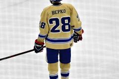CIACT D3 Ice Hockey; #8 Newtown 7 vs. #9 Wilton 2 - Photo # 1347