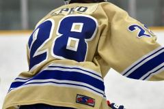 CIACT D3 Ice Hockey; #8 Newtown 7 vs. #9 Wilton 2 - Photo # 152