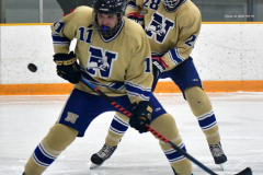 CIACT D3 Ice Hockey; #8 Newtown 7 vs. #9 Wilton 2 - Photo # 1733