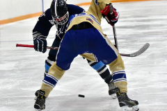 CIACT D3 Ice Hockey; #8 Newtown 7 vs. #9 Wilton 2 - Photo # 1752