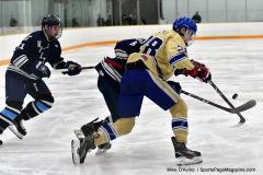 CIACT D3 Ice Hockey; #8 Newtown 7 vs. #9 Wilton 2 - Photo # 1756
