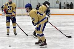 CIACT D3 Ice Hockey; #8 Newtown 7 vs. #9 Wilton 2 - Photo # 211