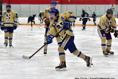 CIACT D3 Ice Hockey; #8 Newtown 7 vs. #9 Wilton 2 - Photo # 213