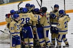 CIACT D3 Ice Hockey; #8 Newtown 7 vs. #9 Wilton 2 - Photo # 2216