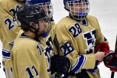CIACT D3 Ice Hockey; #8 Newtown 7 vs. #9 Wilton 2 - Photo # 2232