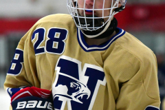 CIACT D3 Ice Hockey; #8 Newtown 7 vs. #9 Wilton 2 - Photo # 371