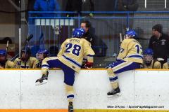 CIACT D3 Ice Hockey; #8 Newtown 7 vs. #9 Wilton 2 - Photo # 708