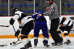 CIACT Ice Hockey D3 QFs; #1 Hand 5 vs. #8 Newtown 0 - Photo # 990