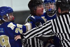 Gallery CIAC Ice Hockey; Northeastern 4 vs. Newtown 3 - Photo # 1212