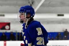 Gallery CIAC Ice Hockey; Northeastern 4 vs. Newtown 3 - Photo # 1707