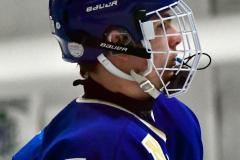 Gallery CIAC Ice Hockey; Northeastern 4 vs. Newtown 3 - Photo # 941