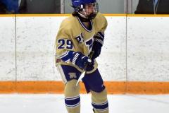 CIAC Ice Hockey; Focused on Newtown 7 vs. Mt. Everett 1 - Photo 347