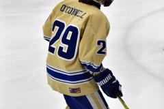 CIAC Ice Hockey; Focused on Newtown 7 vs. Mt. Everett 1 - Photo 390