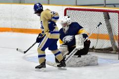 CIAC Ice Hockey; Focused on Newtown 7 vs. Mt. Everett 1 - Photo 394
