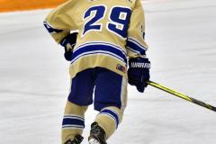 CIAC Ice Hockey; Focused on Newtown 7 vs. Mt. Everett 1 - Photo 406