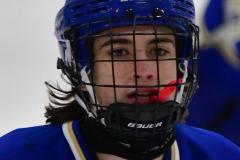 CIAC Ice Hockey; L.H.- H-K, Cogin. 8 vs Newtown 1 - Photo # (103)