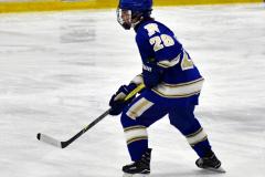 CIAC Ice Hockey; L.H.- H-K, Cogin. 8 vs Newtown 1 - Photo # (168)