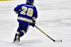 CIAC Ice Hockey; L.H.- H-K, Cogin. 8 vs Newtown 1 - Photo # (289)