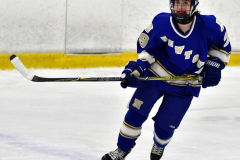 CIAC Ice Hockey; L.H.- H-K, Cogin. 8 vs Newtown 1 - Photo # (291)