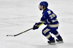 CIAC Ice Hockey; L.H.- H-K, Cogin. 8 vs Newtown 1 - Photo # (478)