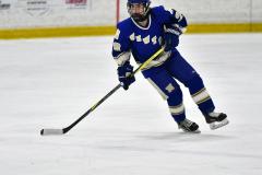 CIAC Ice Hockey; L.H.- H-K, Cogin. 8 vs Newtown 1 - Photo # (500)