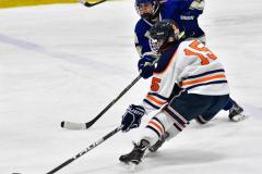 CIAC Ice Hockey; L.H.- H-K, Cogin. 8 vs Newtown 1 - Photo # (517)
