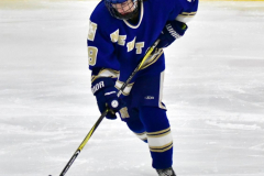 CIAC Ice Hockey; L.H.- H-K, Cogin. 8 vs Newtown 1 - Photo # (709)
