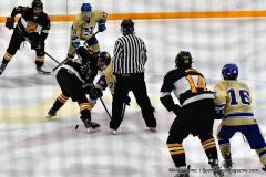 CIAC Ice Hockey; Newtown 2 vs. Daniel Hand 6 - Photo # 1001