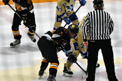 CIAC Ice Hockey; Newtown 2 vs. Daniel Hand 6 - Photo # 1003