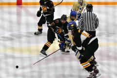 CIAC Ice Hockey; Newtown 2 vs. Daniel Hand 6 - Photo # 1004