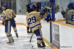 CIAC Ice Hockey; Newtown 2 vs. Daniel Hand 6 - Photo # 1029