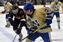 CIAC Ice Hockey; Newtown 2 vs. Daniel Hand 6 - Photo # 1139