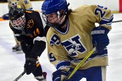 CIAC Ice Hockey; Newtown 2 vs. Daniel Hand 6 - Photo # 1140