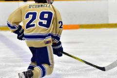 CIAC Ice Hockey; Newtown 2 vs. Daniel Hand 6 - Photo # 1144
