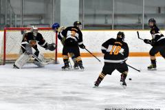 CIAC Ice Hockey; Newtown 2 vs. Daniel Hand 6 - Photo # 1226