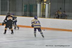 CIAC Ice Hockey; Newtown 2 vs. Daniel Hand 6 - Photo # 1236