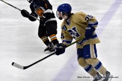 CIAC Ice Hockey; Newtown 2 vs. Daniel Hand 6 - Photo # 1248