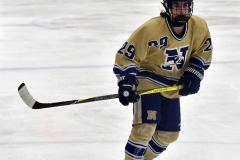CIAC Ice Hockey; Newtown 2 vs. Daniel Hand 6 - Photo # 1262