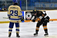 CIAC Ice Hockey; Newtown 2 vs. Daniel Hand 6 - Photo # 1334